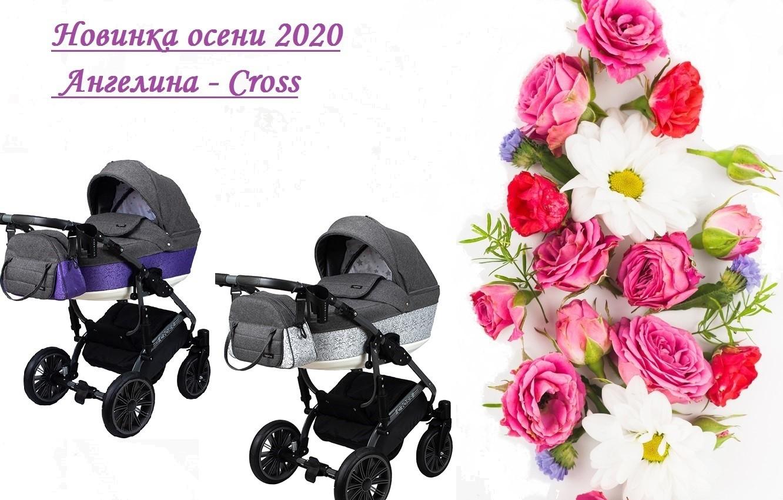 Cross Универсальная коляска 2в1
